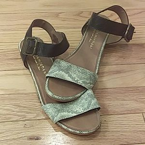 Brown Sandals with alligator print and buckle